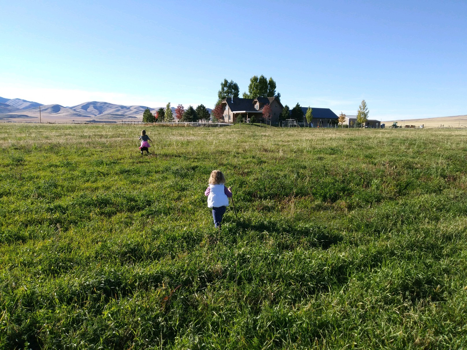 Children running through the field toward the house